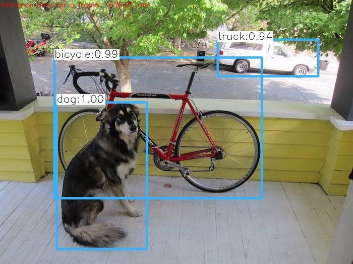 dog_yolo_out_cpp
